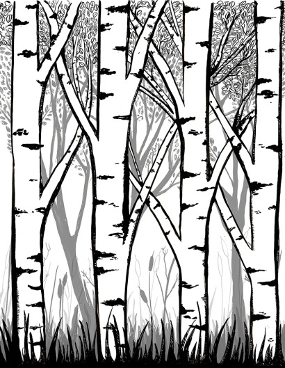 Forest Illustration by bekky O'Neil