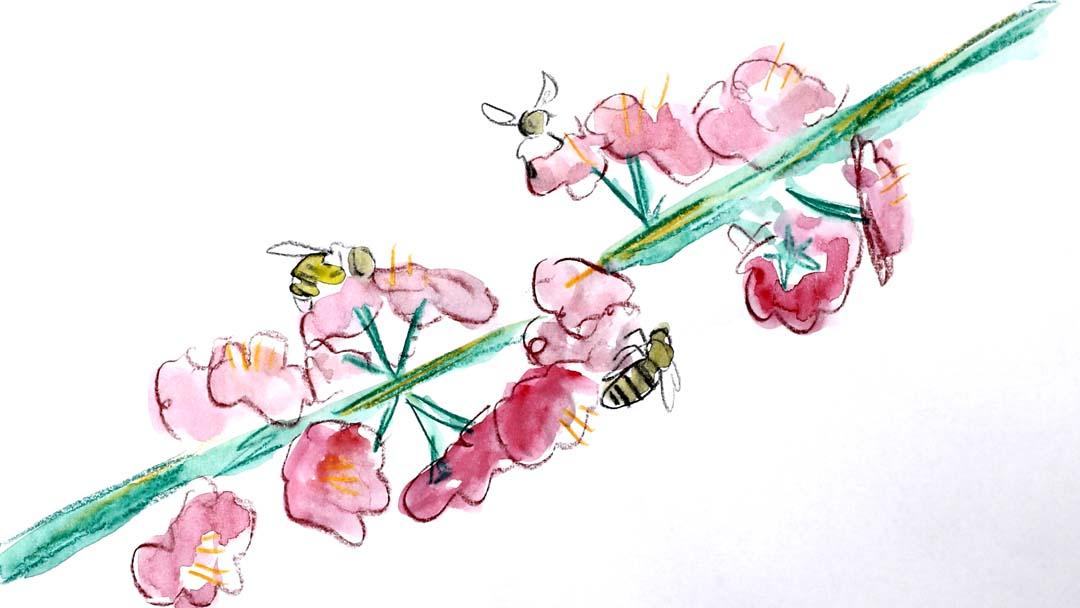 LSITG_Still_Bees.jpg