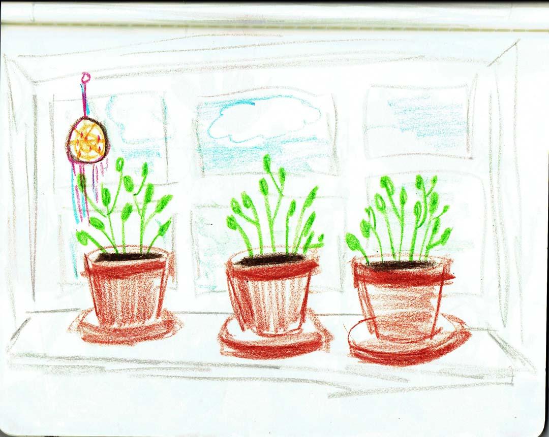 gardenconcept_13.jpg