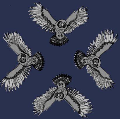 owls_colour