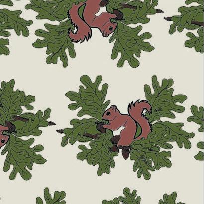 squirrel_colour